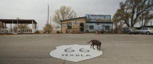 almost ghosts perro ruta 66 documental proyección nolich